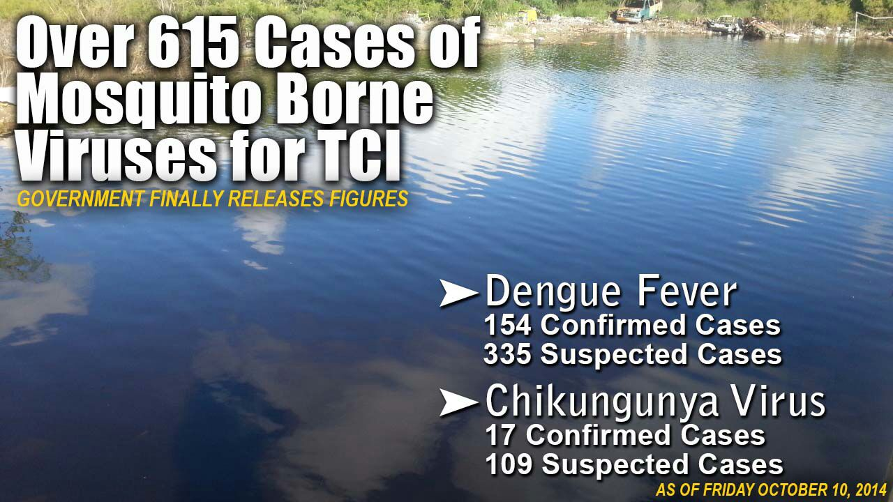 615 cases of mosquito borne illnesses in The Turks and Caicos Islands