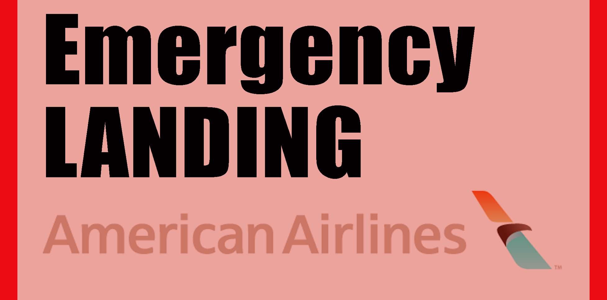 AA Emergency Landing