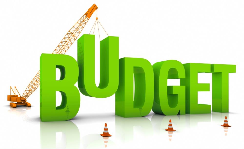 Green Budget