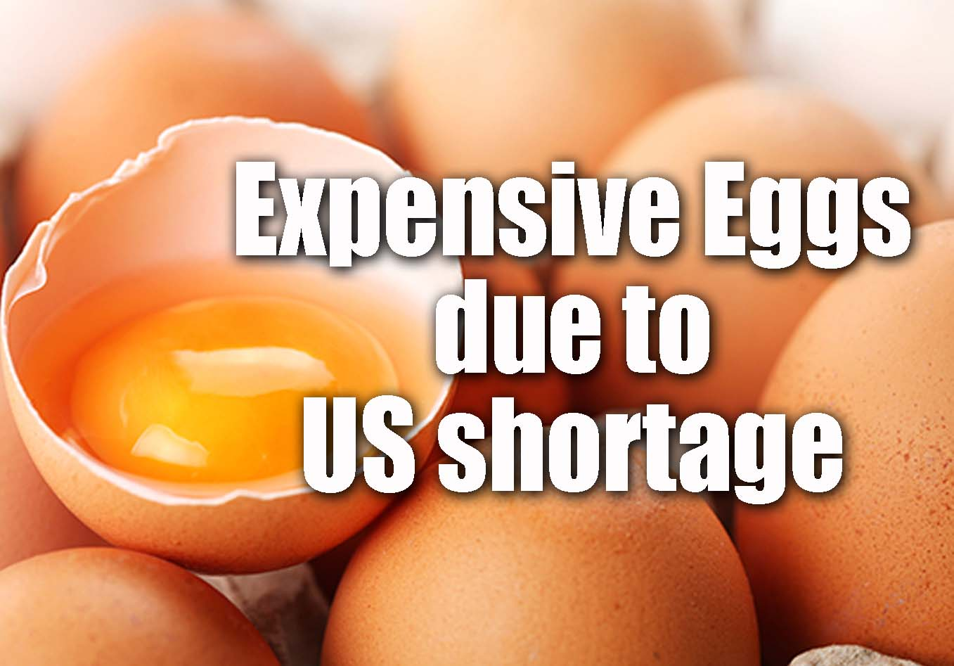 Eggs Expensive