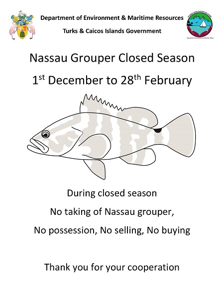 Nassau grouper Closed Season-page-001