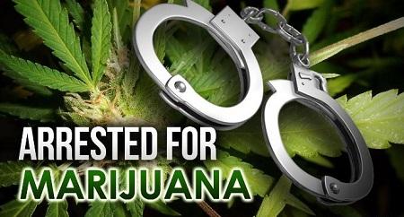 marijuanaarrest5
