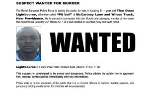 Pitbull Wanted
