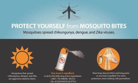 zika protection