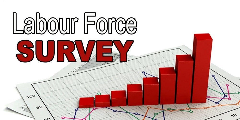 Labour Force Survey