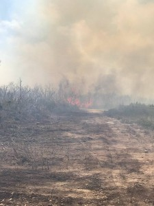 Long Island fire 3