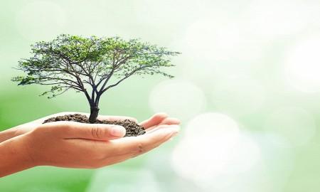 nachhaltige-suchmaschinen-optimierung-c