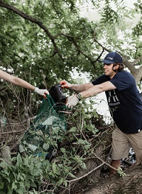 ubbcleanups9_preview