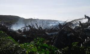 dump fire gt 3