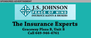 JS Johnson Insert